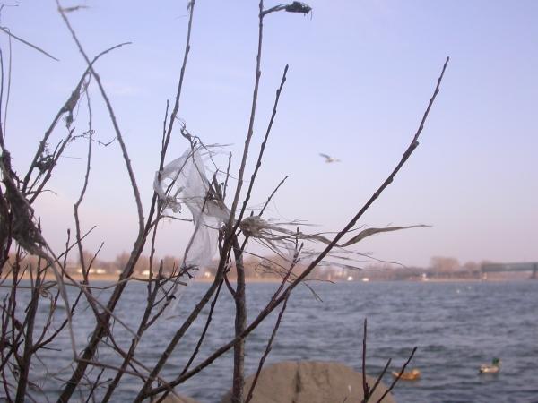 Flußlandschaft mit Tüte.