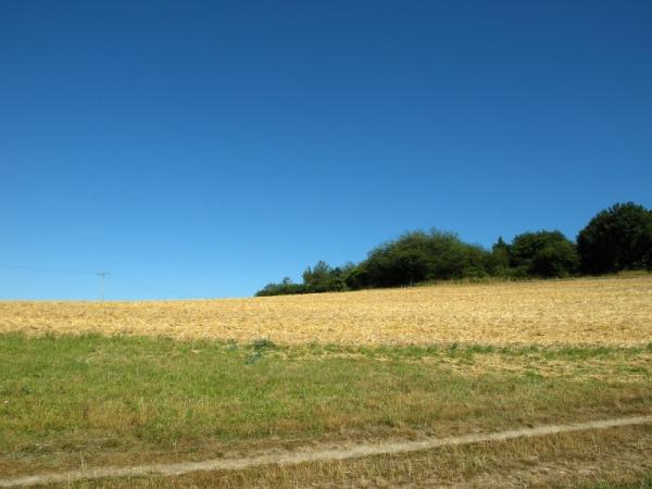 Augusthitze über abgeernteten Feldern.