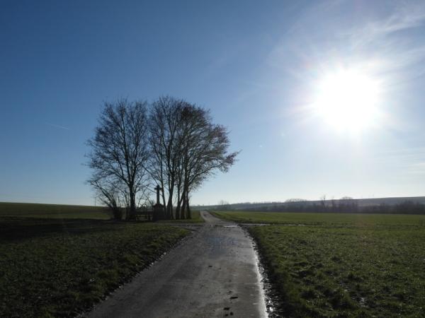 Wegkreuz an altem Feldweg.