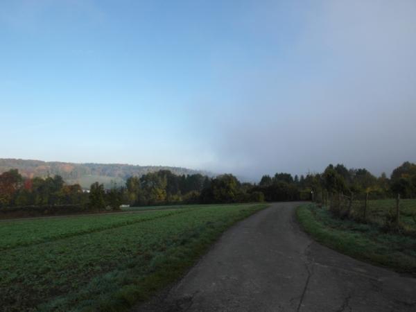 Dem Nebel davon ...