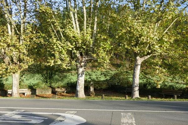 Platz mit Bäumen, Bank und Brunnen.